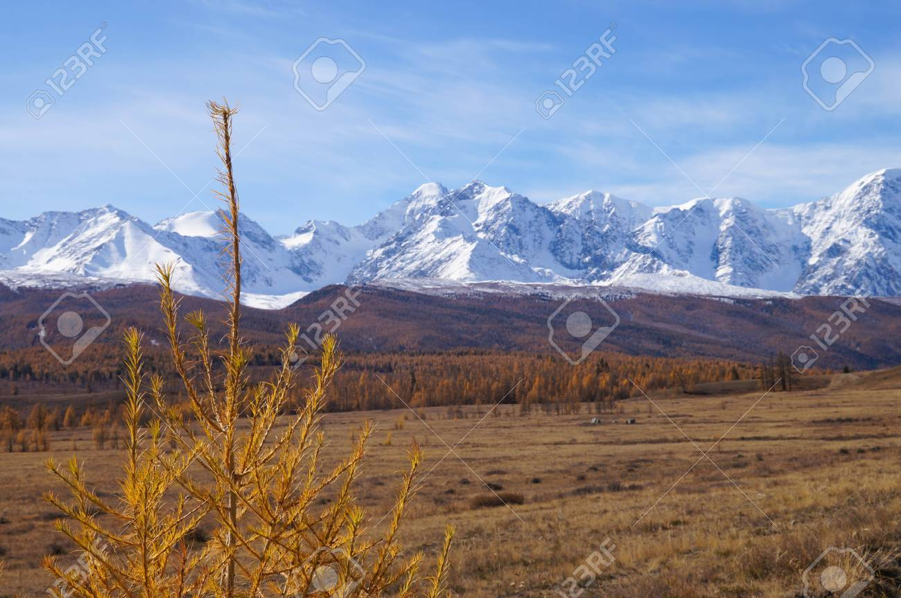 Beautiful Kurai Steppe in the morning,Russia.The North- Chuysky range is a mountain range in Kosh-Agach district of Altai Republic,Altai Mountain,Siberia,Russia. - 111563284