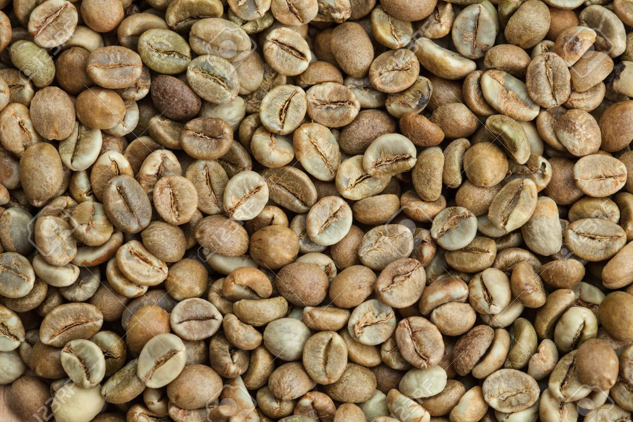 Green Coffee Beans Grade Robusta Uganda Stock Photo Picture And