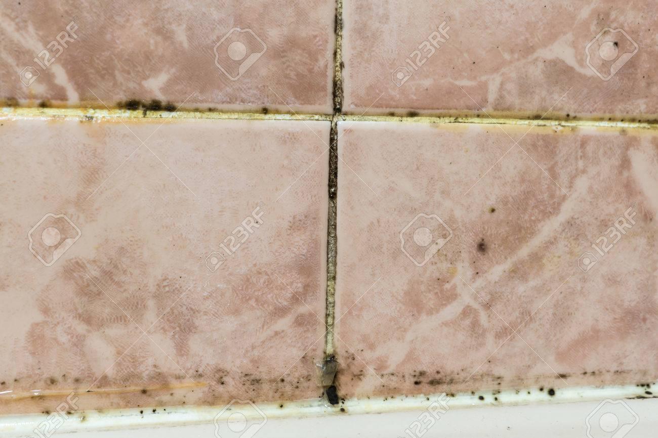 moisissure noire qui pousse dans les zones de bain humides et mal ares en dtail une salle de bain non entretenue moule joints de carrelage avec
