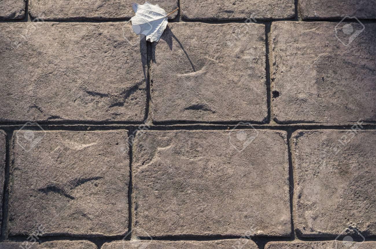 Gestempeltes Betonpflaster Im Freien, Kopfsteinpflastermuster ...