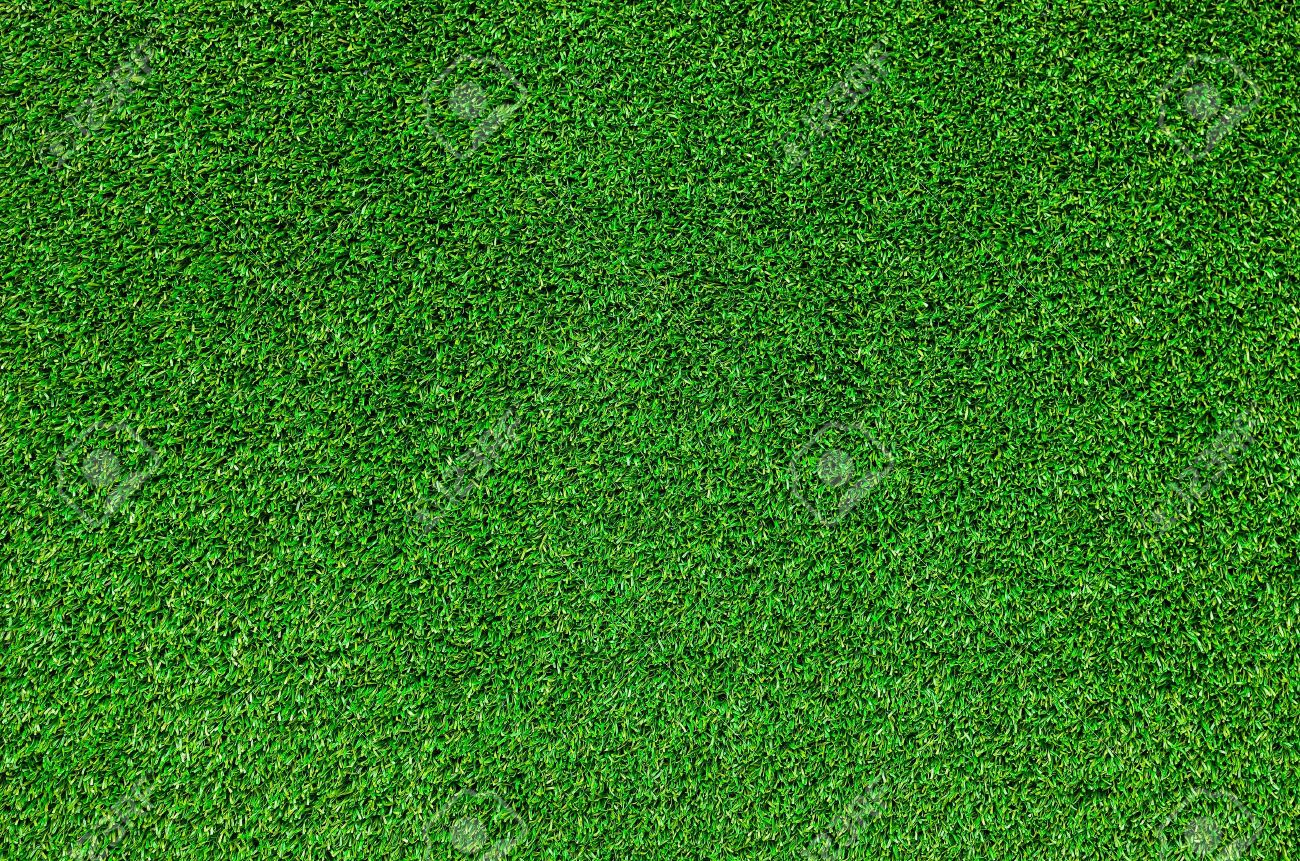 Water quality friendly lawn care and fertilizer recommendations for northern New England