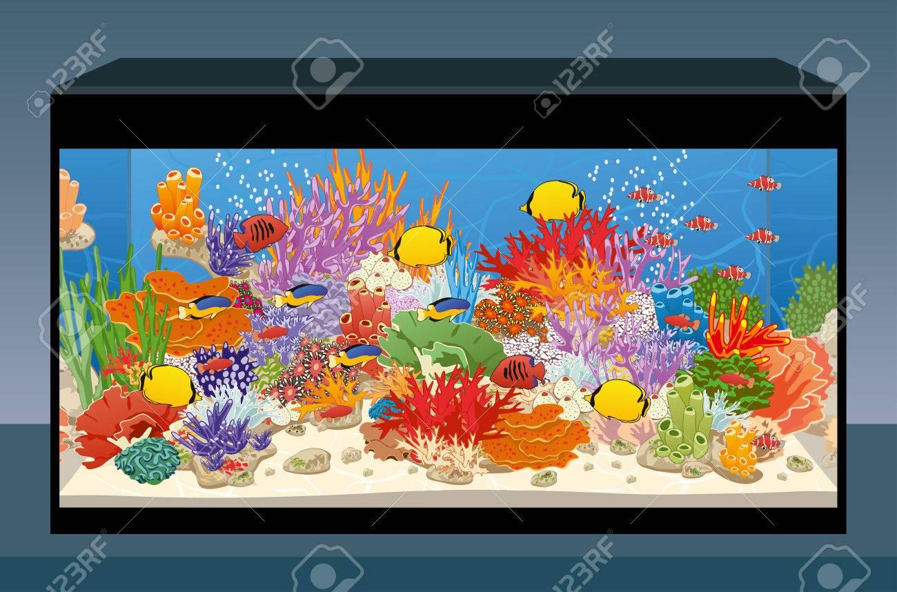 海洋礁魚やサンゴに塩水のアクアリウムベクトル図のイラスト素材