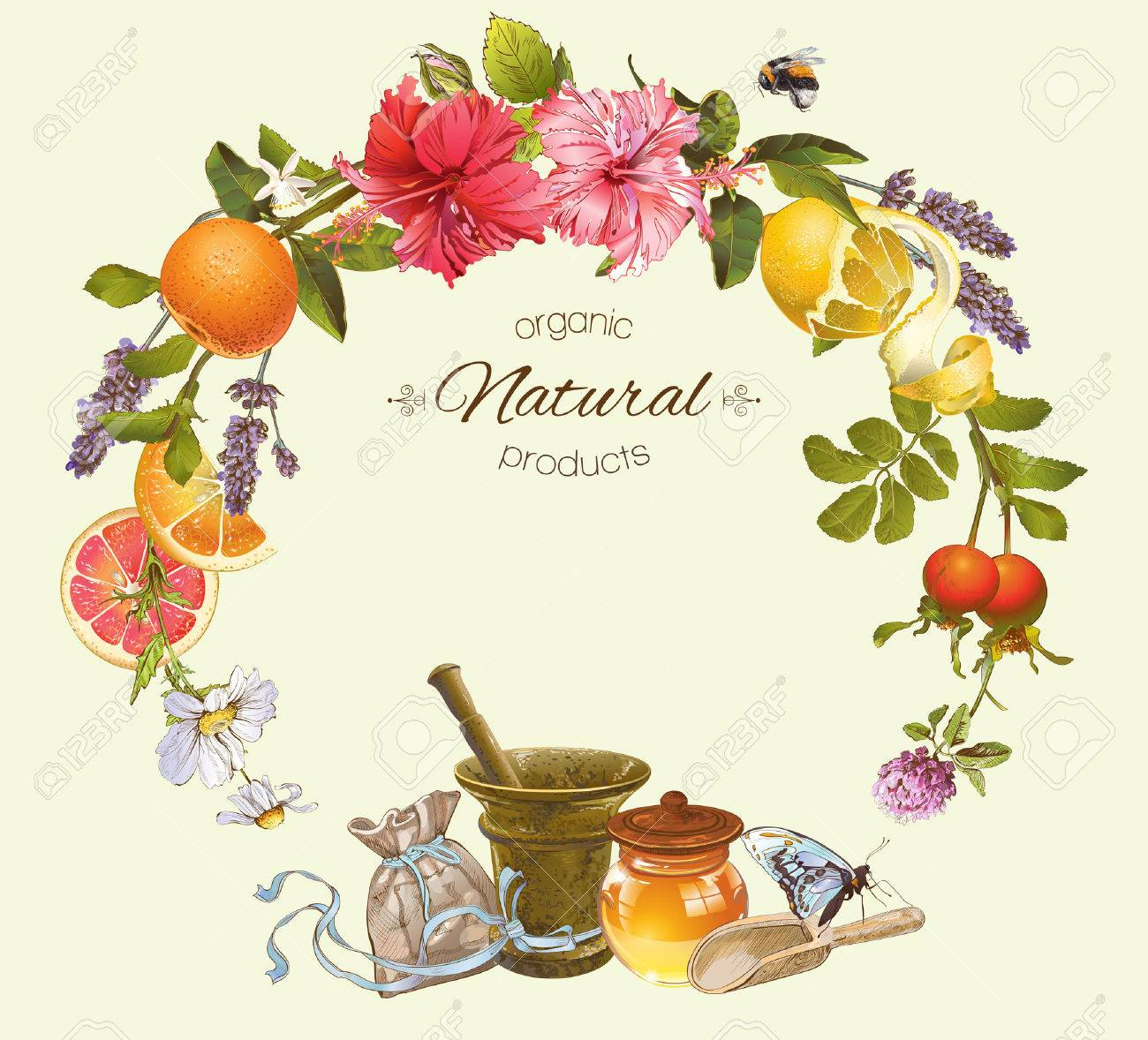 Vector vintage frame with honey, hibiscus,lemon and rose hip.Design for tea, juice, natural cosmetics, baking,candy and sweets,grocery,health care products. With place for text. - 58161575