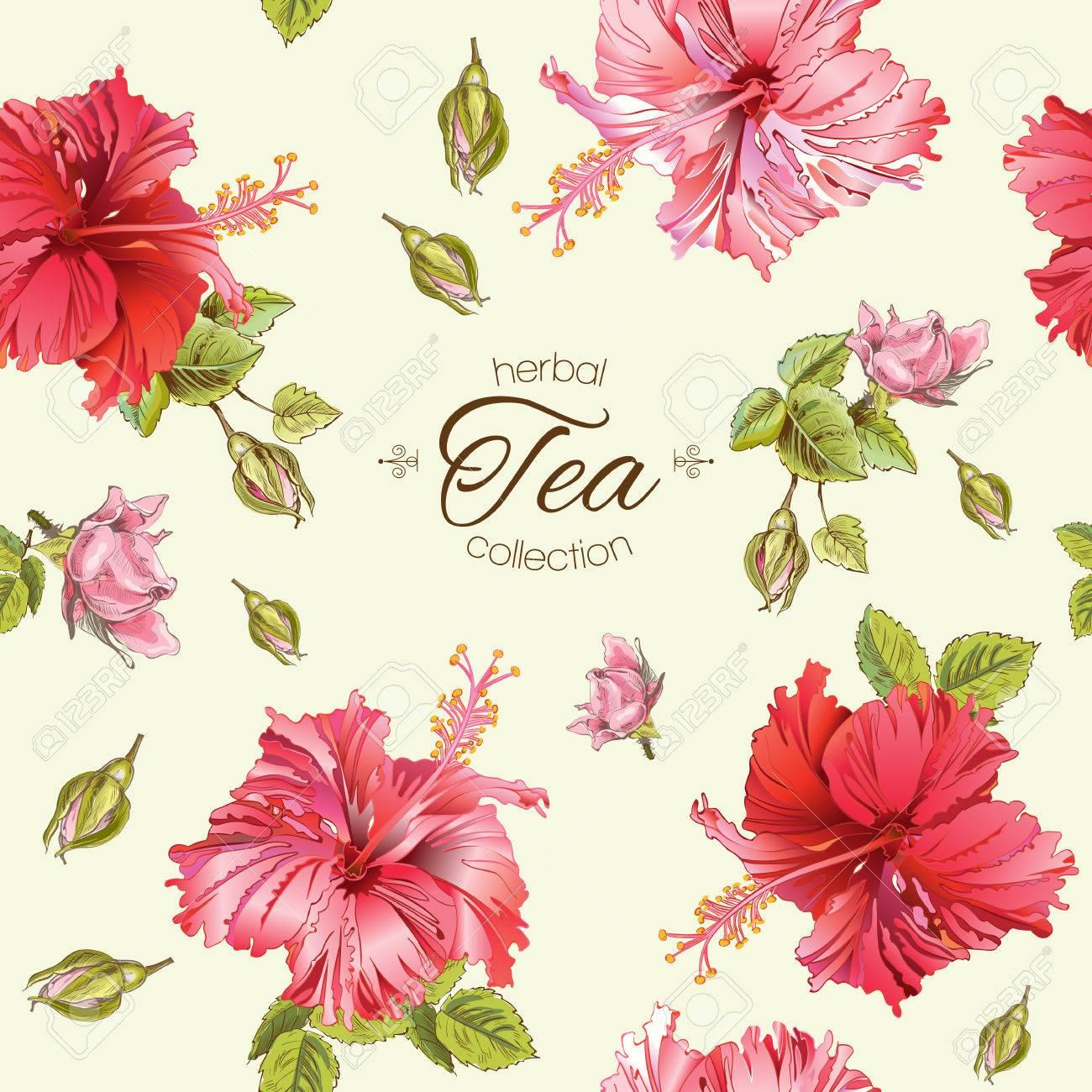 Vector Herbal Tea Seamless Pattern With Hibiscus Flowersbackground