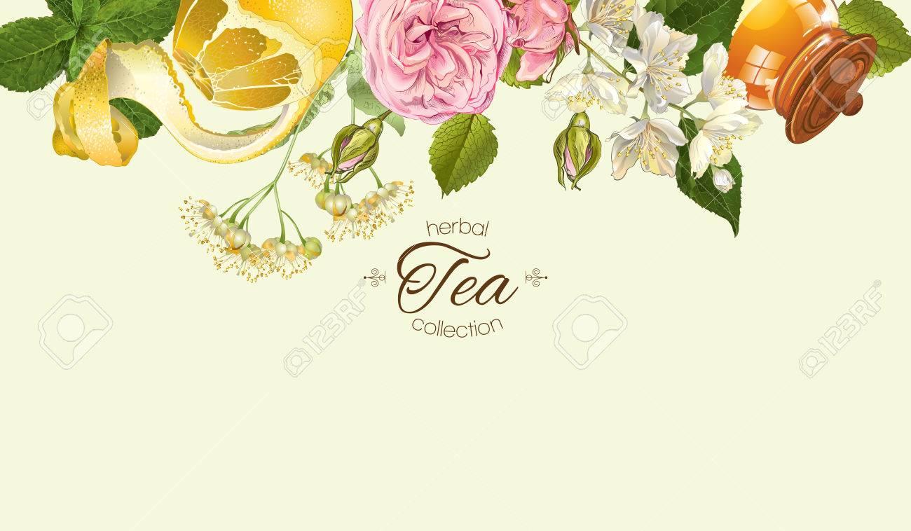 Vector Herbal Tea Horizontal Banner With Rose And Jasmine Flowers