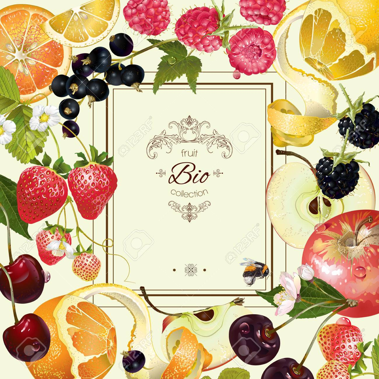vintage fruit and berry frame. Design for vegeterian menu, tea, ice cream, juice, jam, natural cosmetics, candy and bakery with fruit filling, health care products. With place or text - 60555279