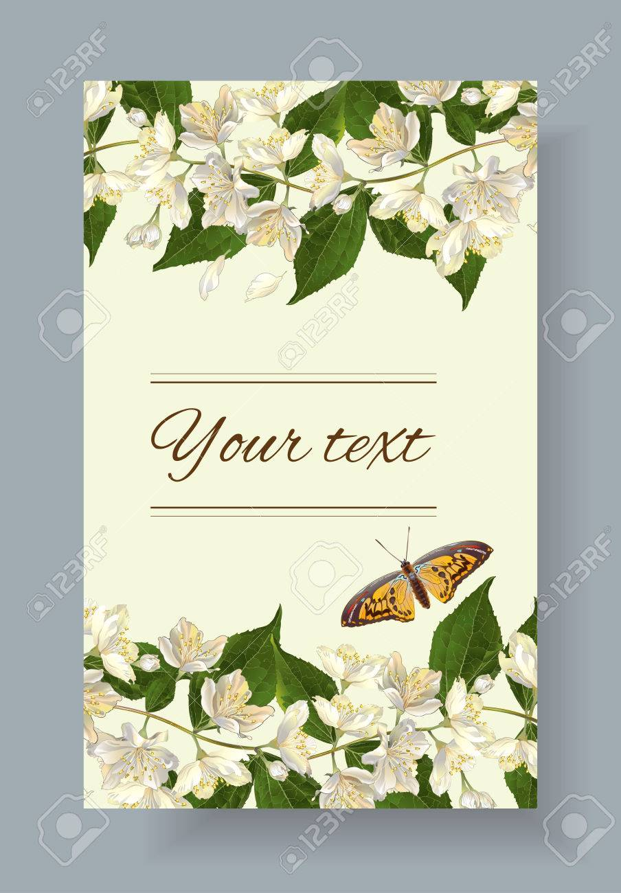 Jasmine Flowers Banner Design For Tea Natural Cosmetics Beauty Royalty Free Cliparts Vectors And Stock Illustration Image 62131295