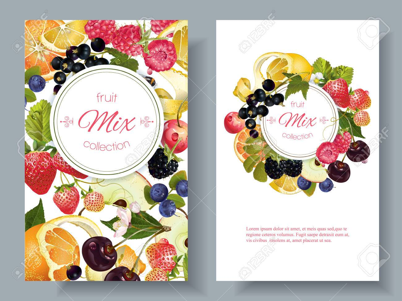 Vector fruit and berry banners. Design for juice, tea, ice cream, jam, natural cosmetics, sweets and pastries filled with fruit, dessert menu, health care products. With place for text - 66322741
