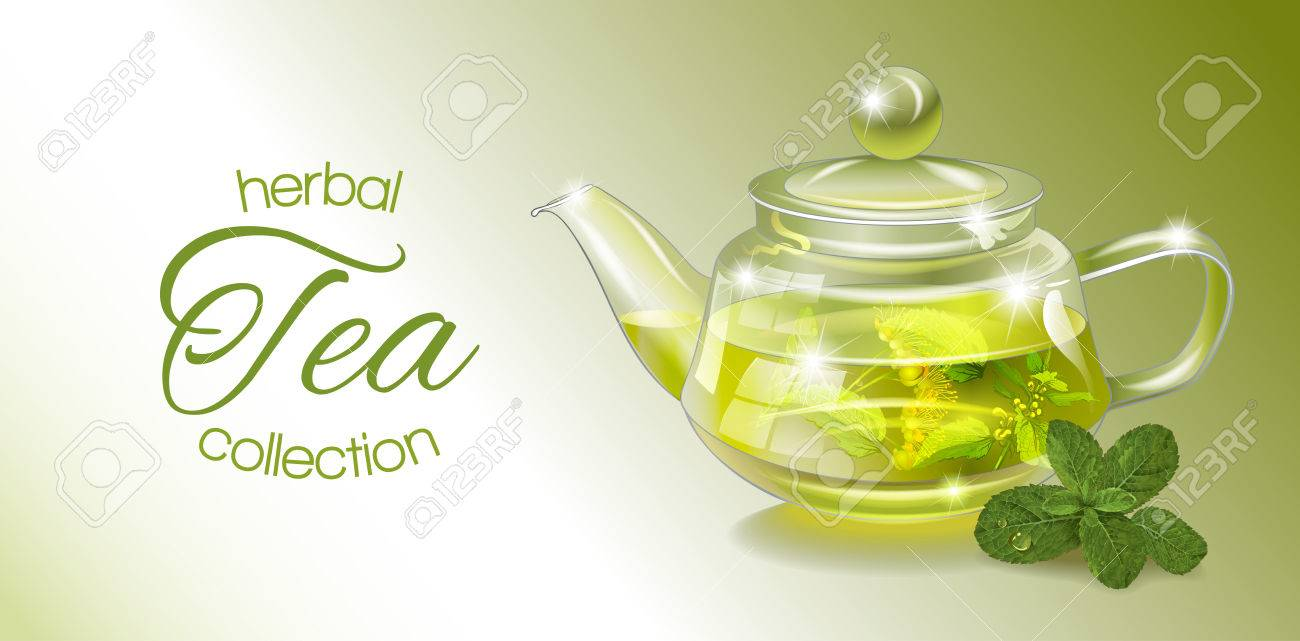 Vector Herbal Tea Banner With Transparent Teapot And Mint Design Royalty Free Cliparts Vectors And Stock Illustration Image 66322847