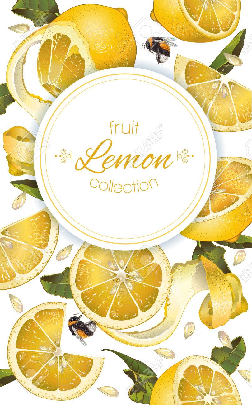 f96ca0ca1a0 Vector - Vector lemon vertical banner. Design for juice, tea, ice cream,  lemonade, jam, natural cosmetics, sweets and pastries filled with lemon, ...