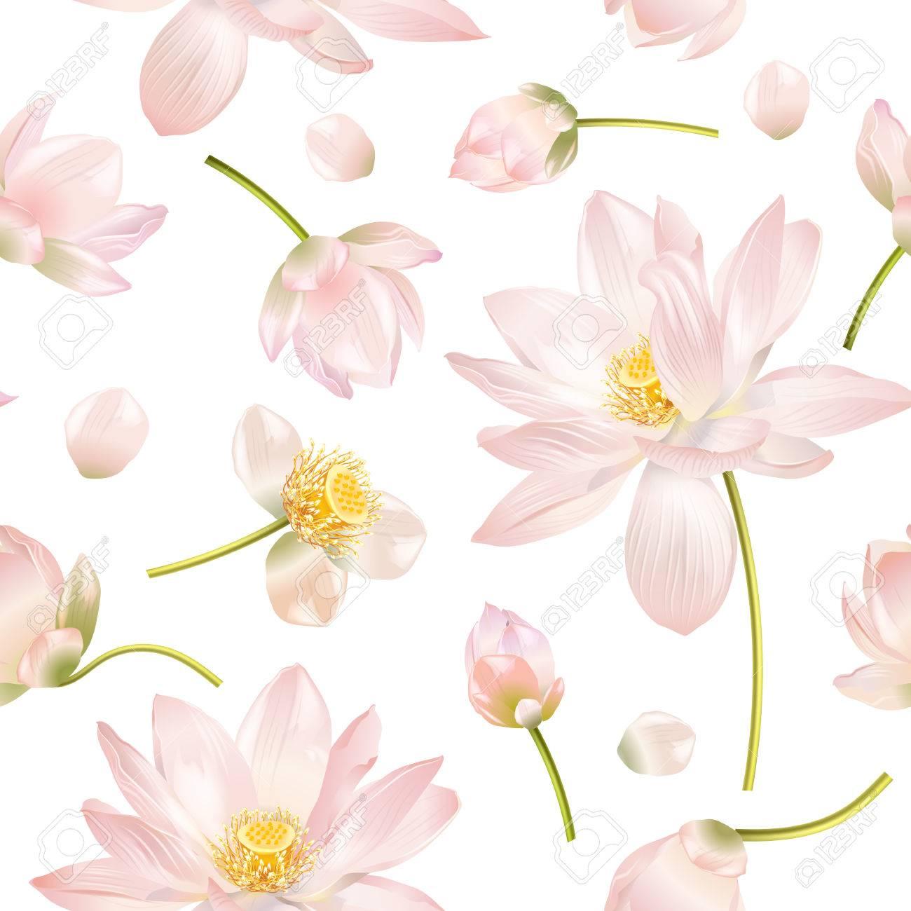 Lotus realistic illustration - 70984180