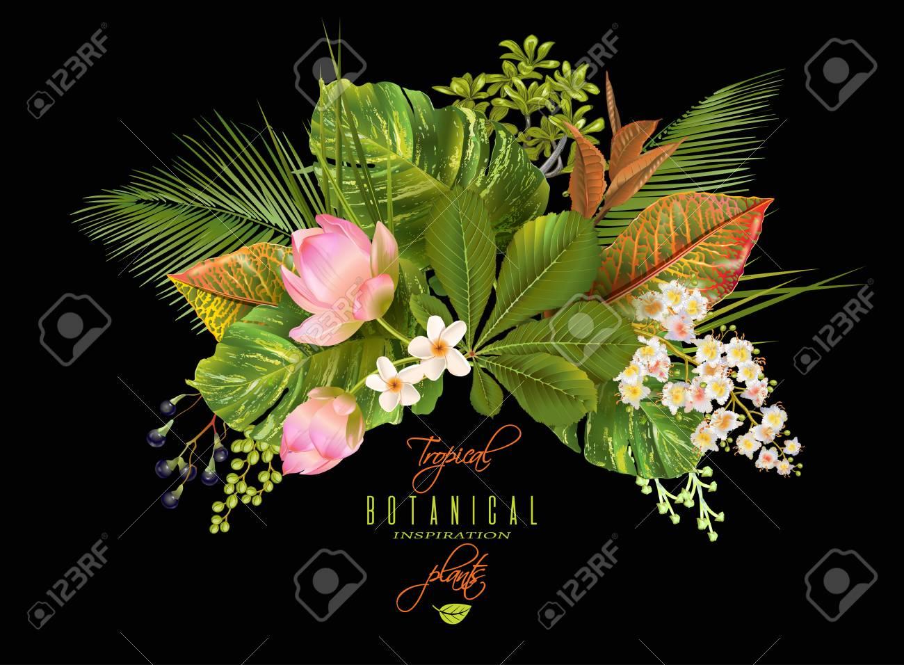Tropial plants banner - 74638919
