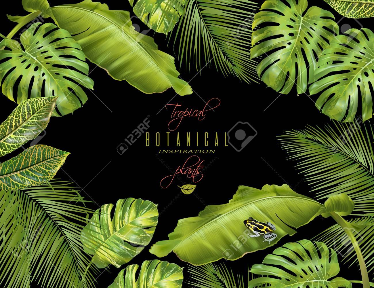 Tropical horizontal banner - 75687110