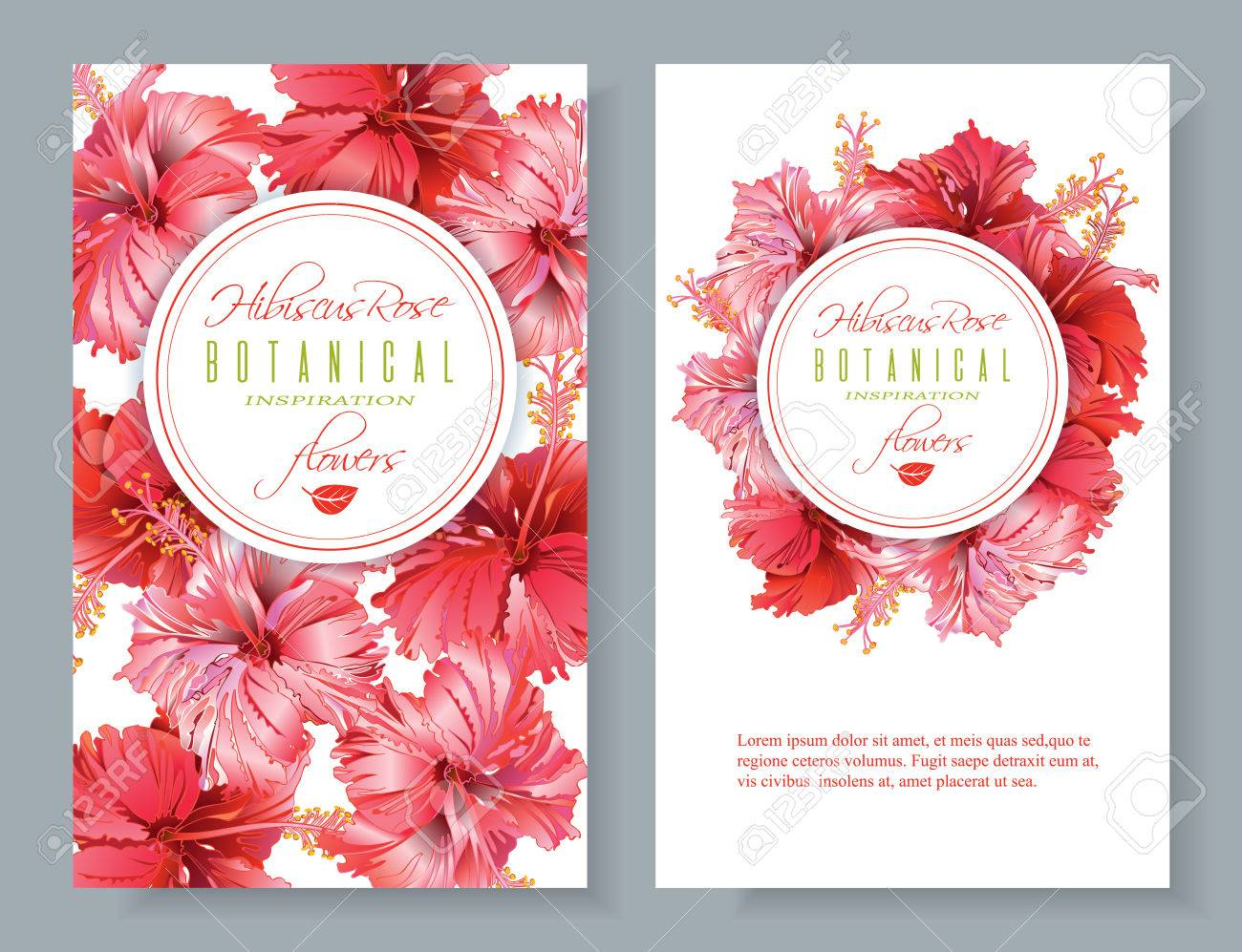 Hibiscus flower banners - 77238601