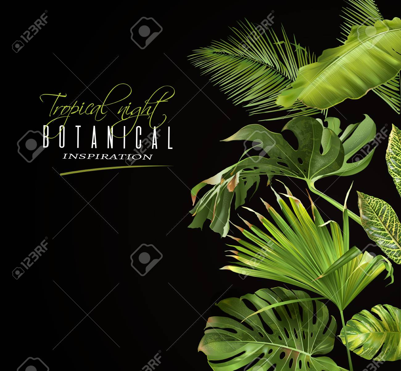 Tropical night banner - 89408789