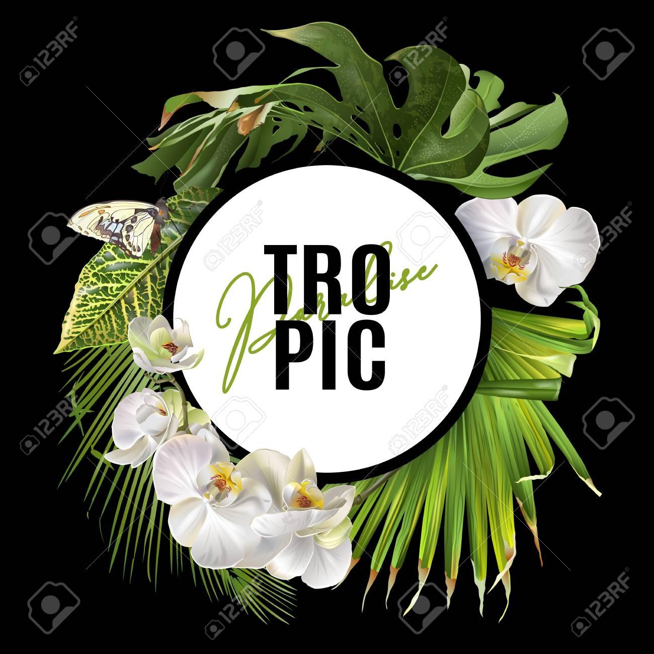 Tropic round banner - 89993632