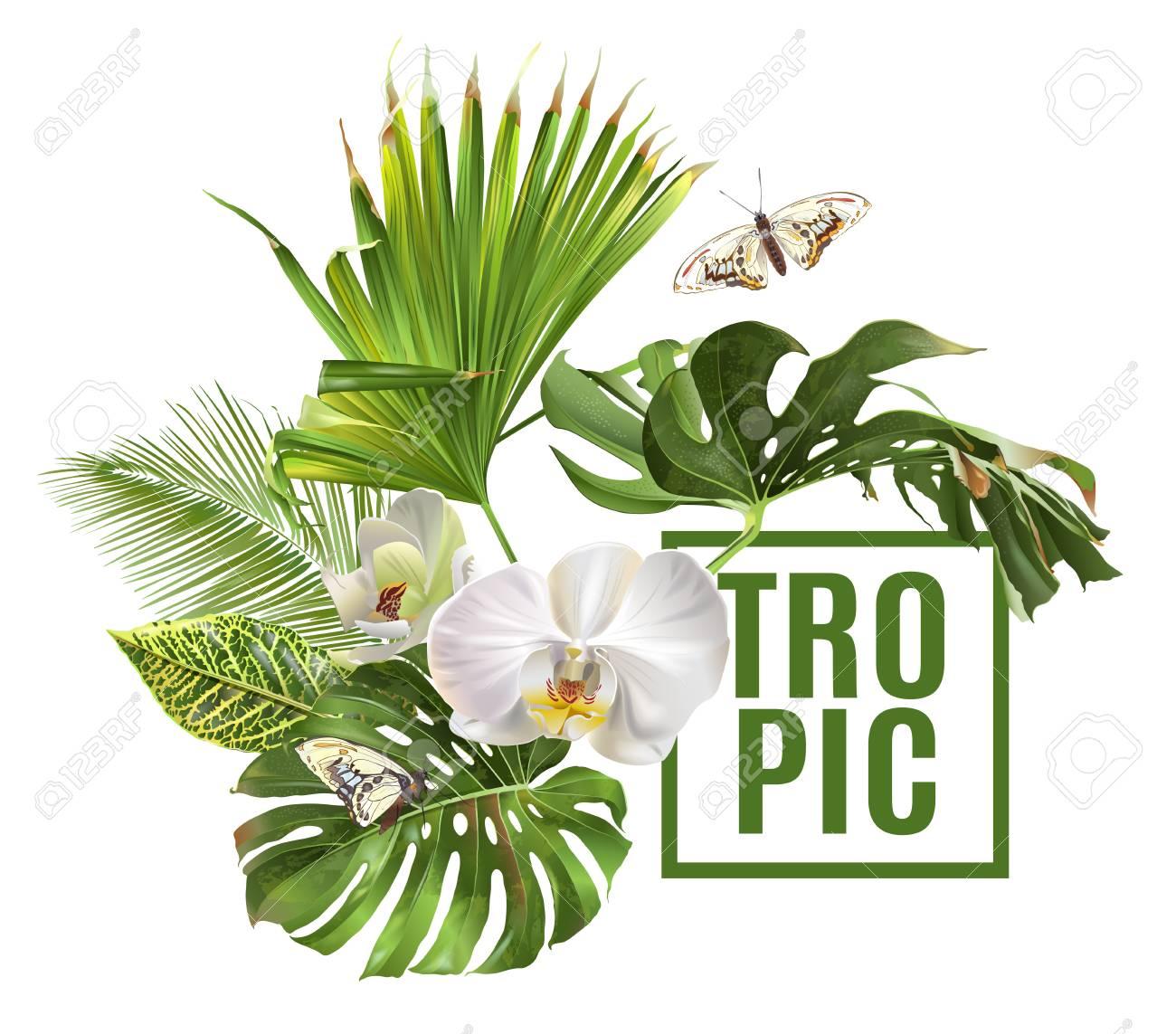 Tropic plants banner - 90041689