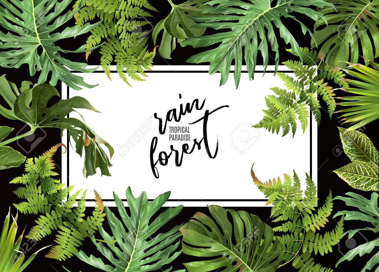 Tropical plants design - 90881838