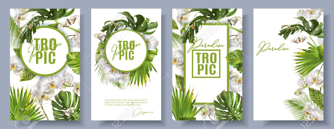 Vector botanical vertical banners set with tropical leaves, orchid flowers and butterflies on white. Design for cosmetics, spa, health care products, travel company. Can be used as summer background - 95177420