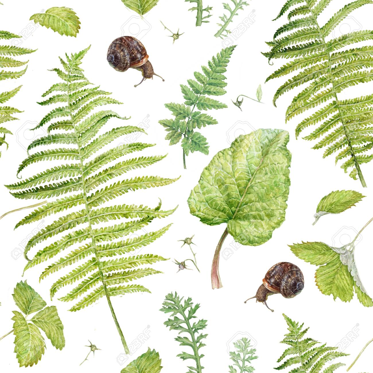 Watercolor pattern with forest plants and snails - 135537686