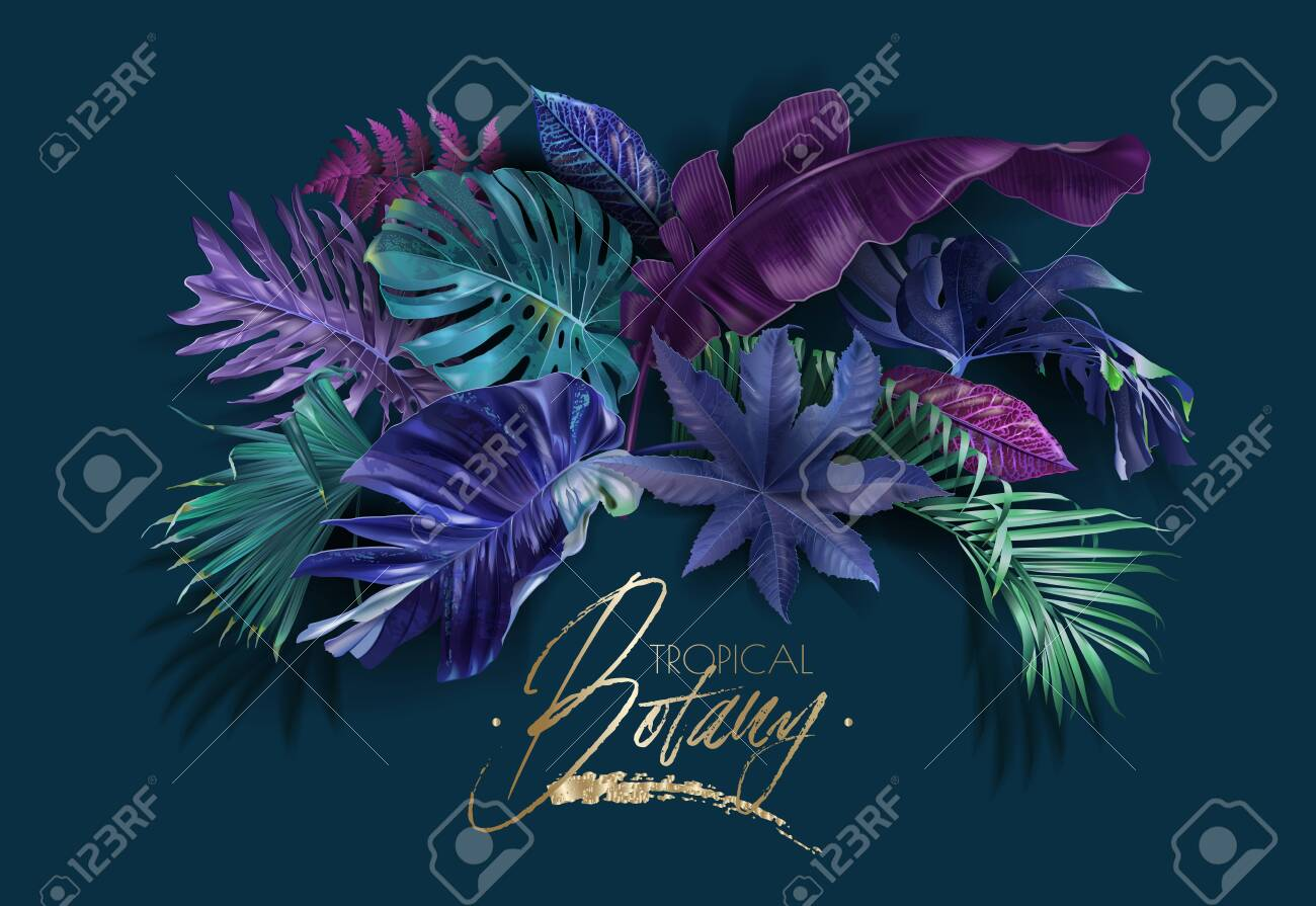 Vector frame banner with color tropical leaves - 137180854