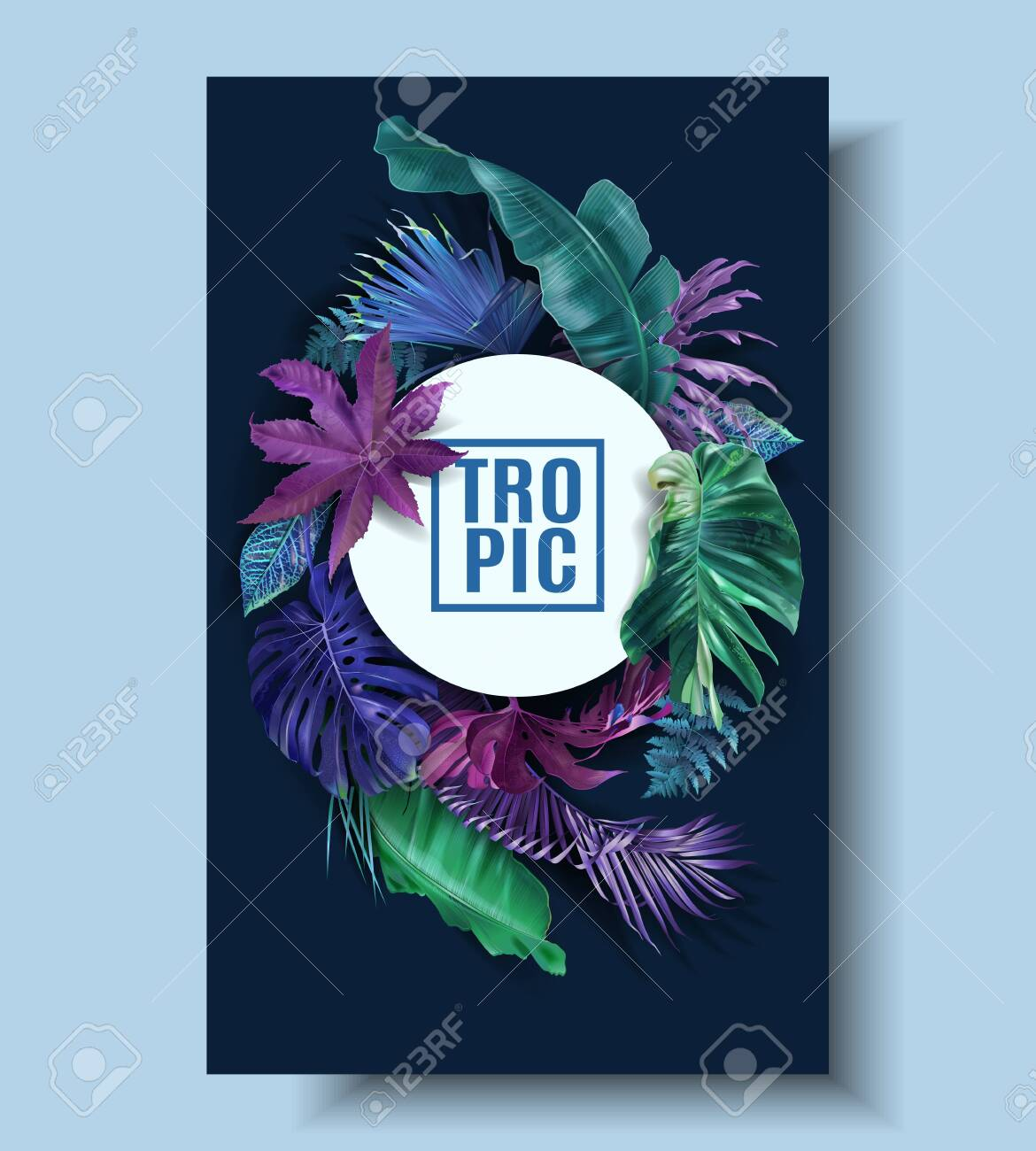 Vector frame banner with color tropical leaves - 137180856