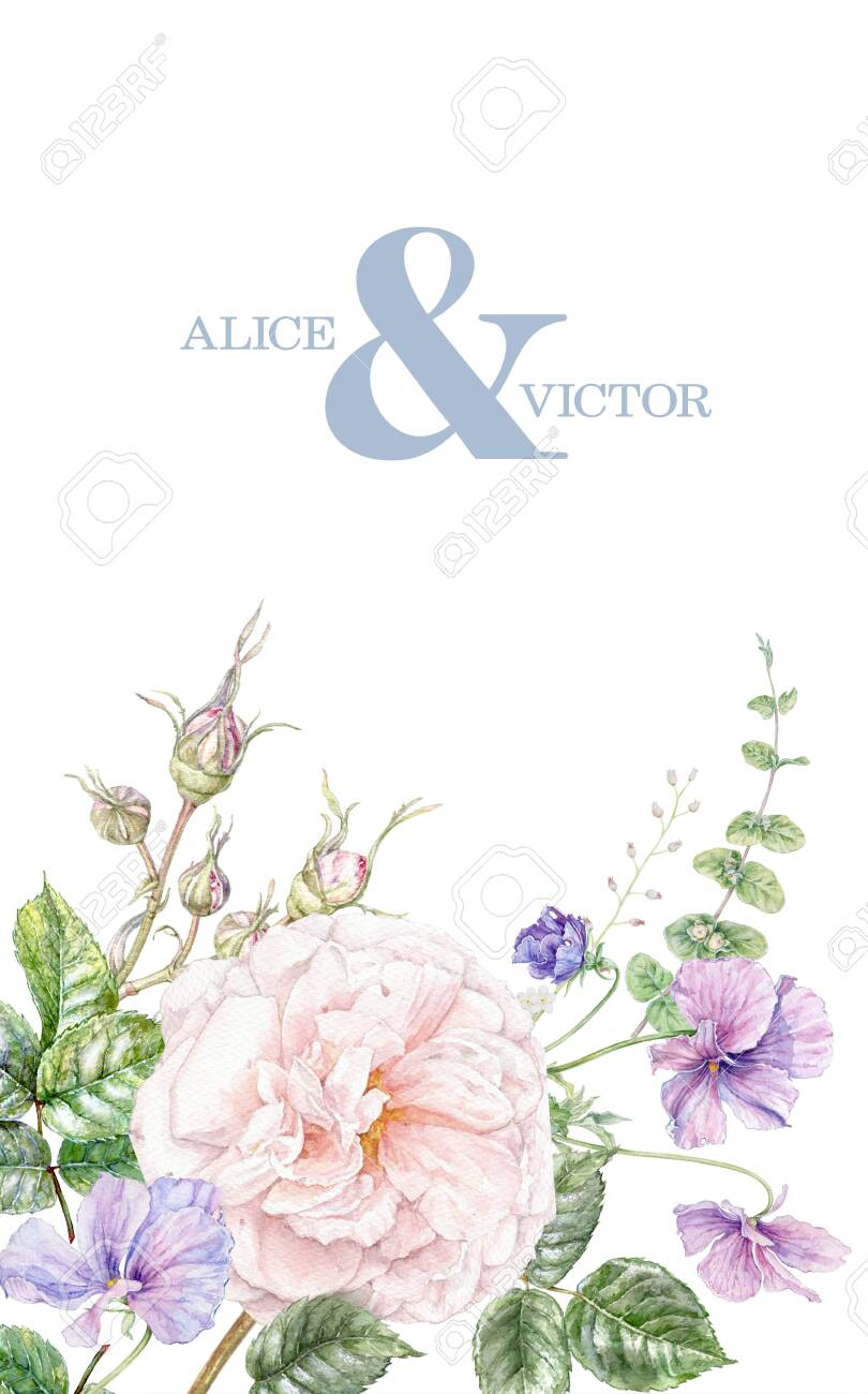 Watercolor wedding invitation with pink rose and violet flowers card isolated on white background. Botanical border for natural cosmetics, women products packaging, summer background, greeting design - 134975321