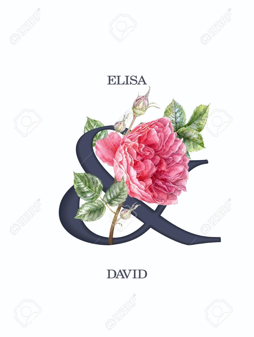 Watercolor pink rose flower wedding invitation card - 137489806