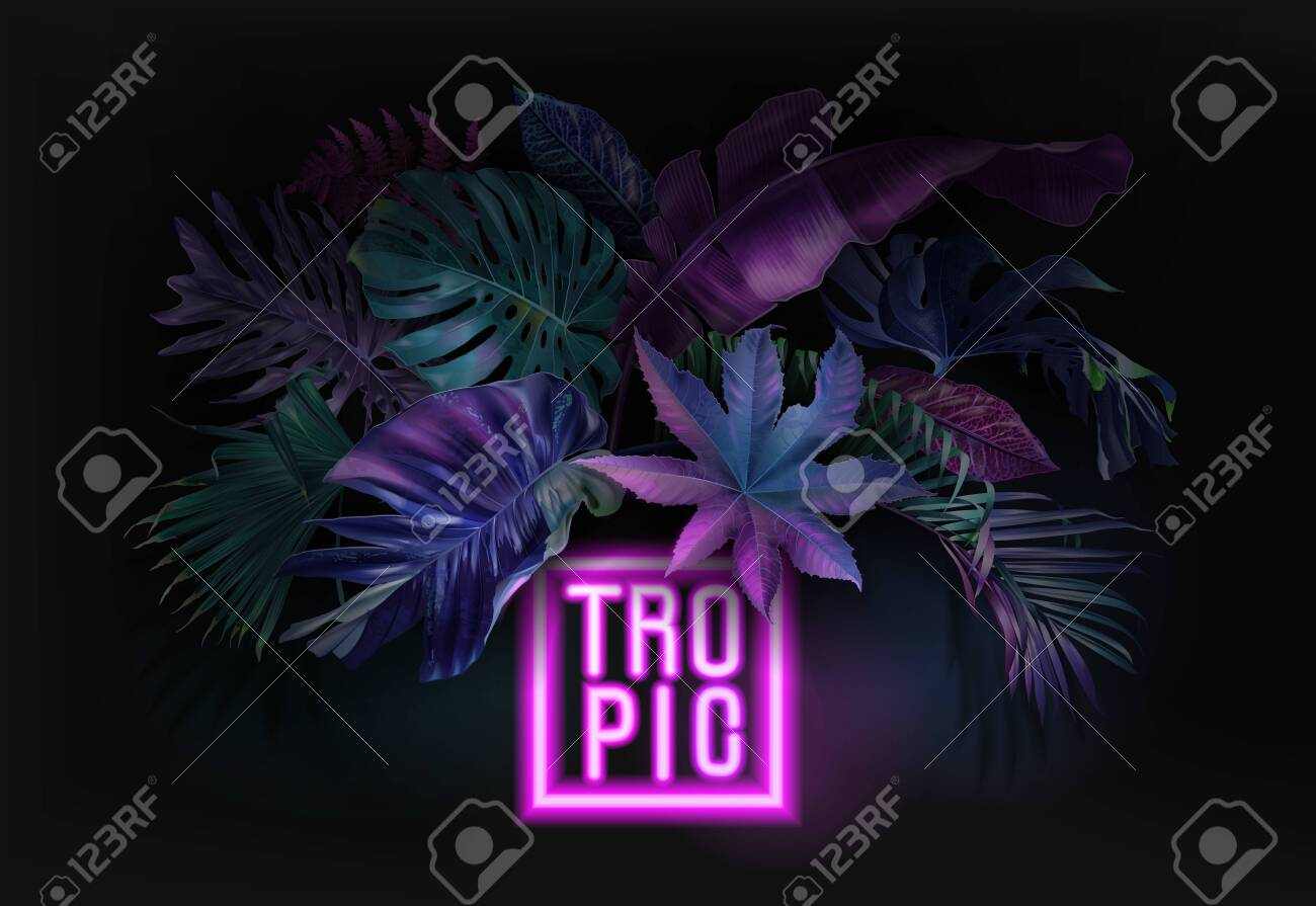 Vector banner with color tropical leaves and neon letters on black background. Botanical design for tropical night party, wedding invitation, cosmetics, spa, beauty salon, travel agency, florist shop - 138137726