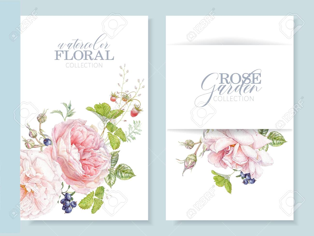 Watercolor cards with pink rose and berries - 141861032