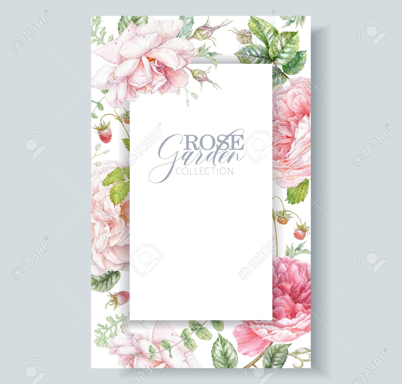Watercolor hand drawn frame with pink rose flowers, berries and leaves isolated on white background. Floral card for natural cosmetics, women products, summer background, greeting or wedding design - 141378055