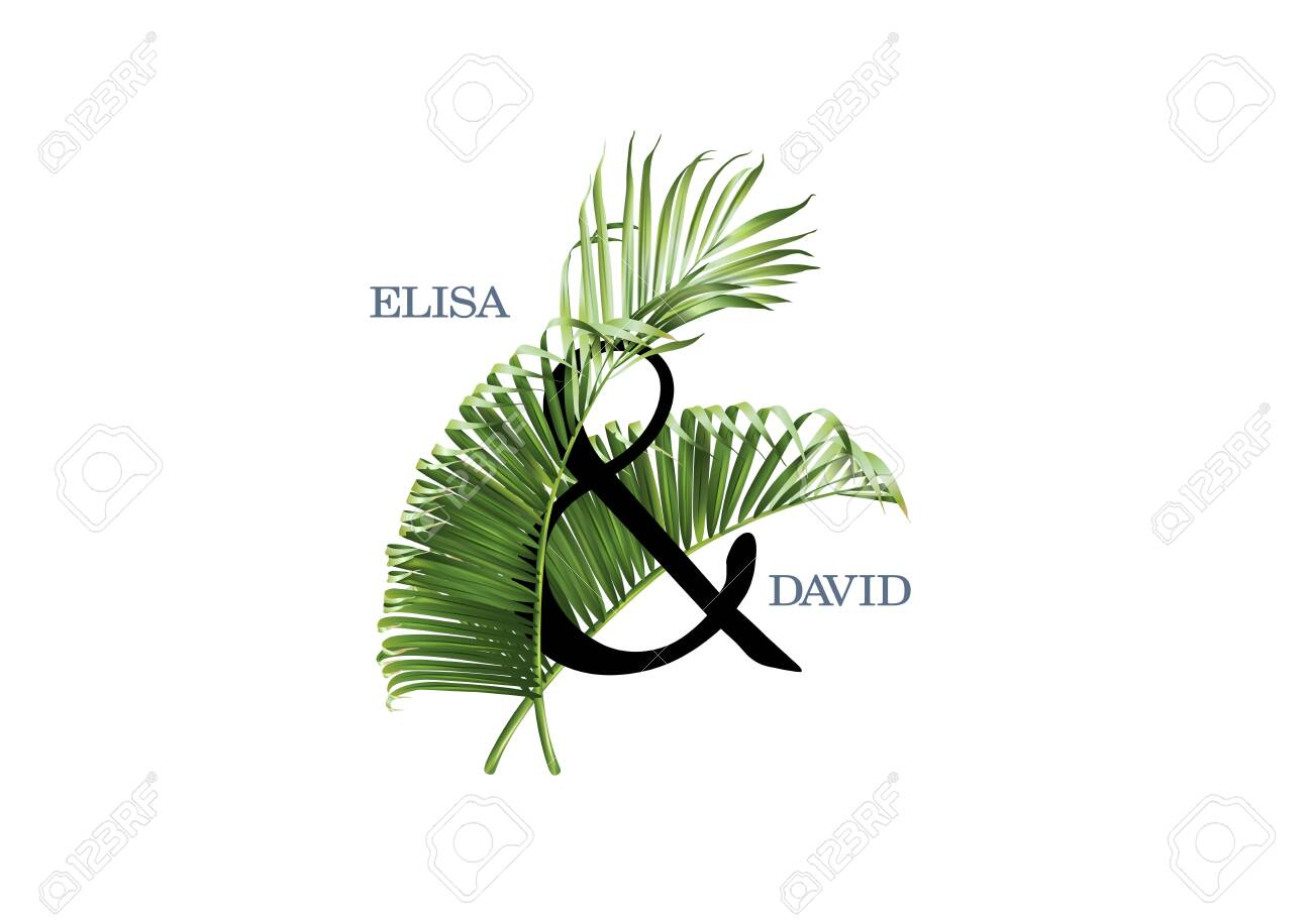 Vector wedding invitation AND composition with green tropical leaves on white background. Luxury exotic botanical design can be used as fashion arrangement, cosmetics, spa, perfume packaging design - 142776284