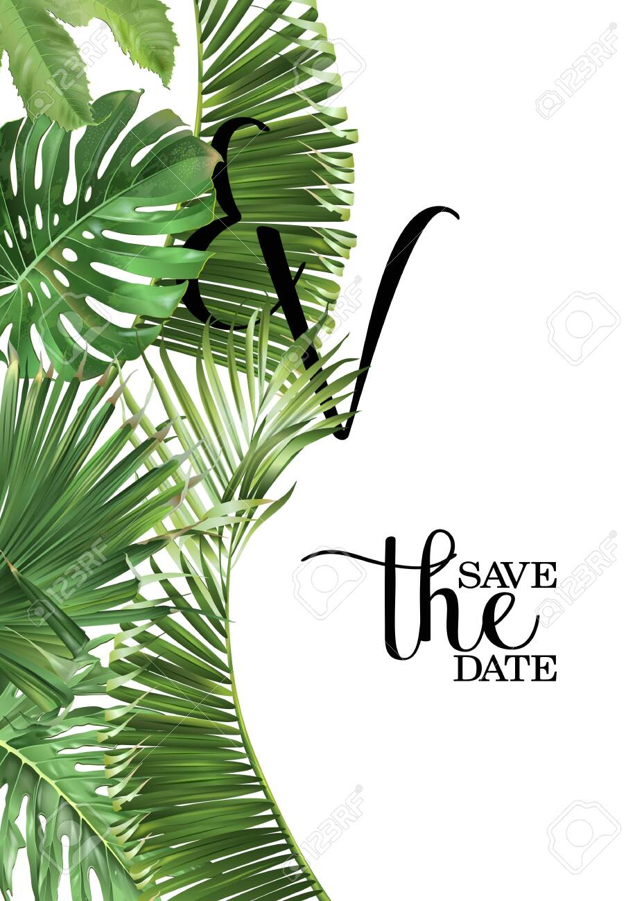 Vector wedding invitation card with green tropical leaves on white background. Luxury exotic botanical design can be used as fashion arrangement, cosmetics, spa, perfume packaging design - 142776360