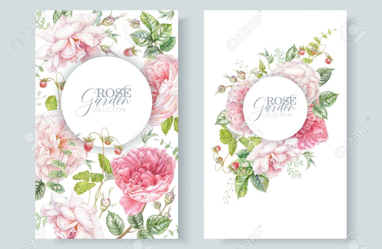 Watercolor frames with pink roses and berries - 147095329