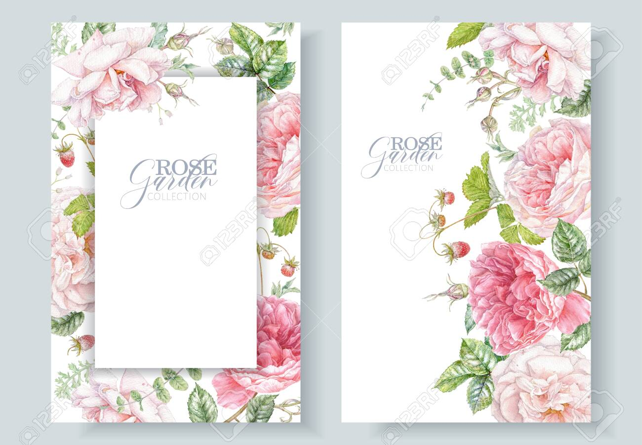 Watercolor frames with pink roses and berries - 147095339
