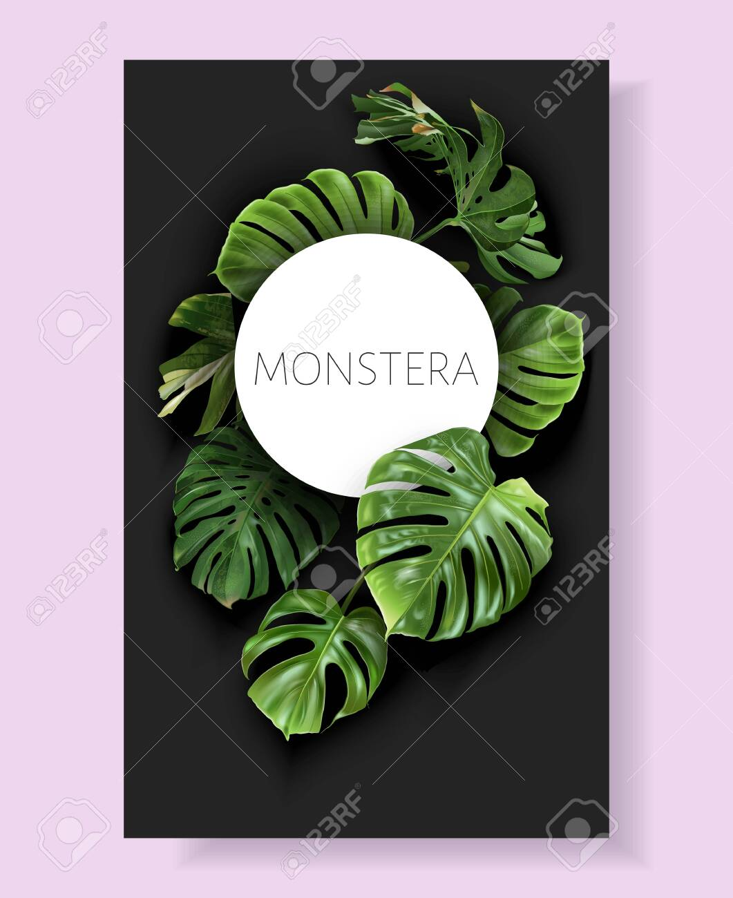 Vector monstera frame with green tropical leaves - 153377118