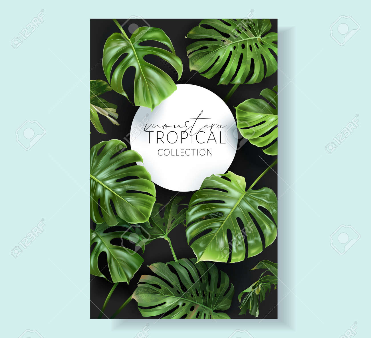 Vector monstera frame with green tropical leaves - 153377129