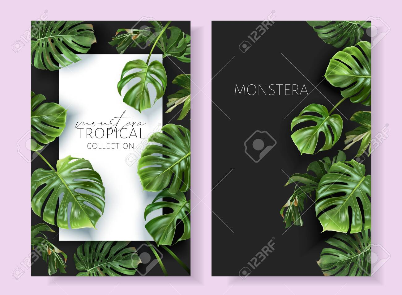 Vector monstera frames with green tropical leaves - 154013020