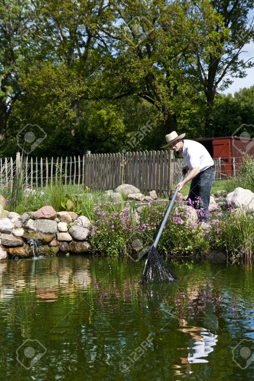 Poissons De L Homme Dans Le Bassin De Jardin Avec Une Epuisette Une Chute De Pierre Et Des Clotures De Paturage