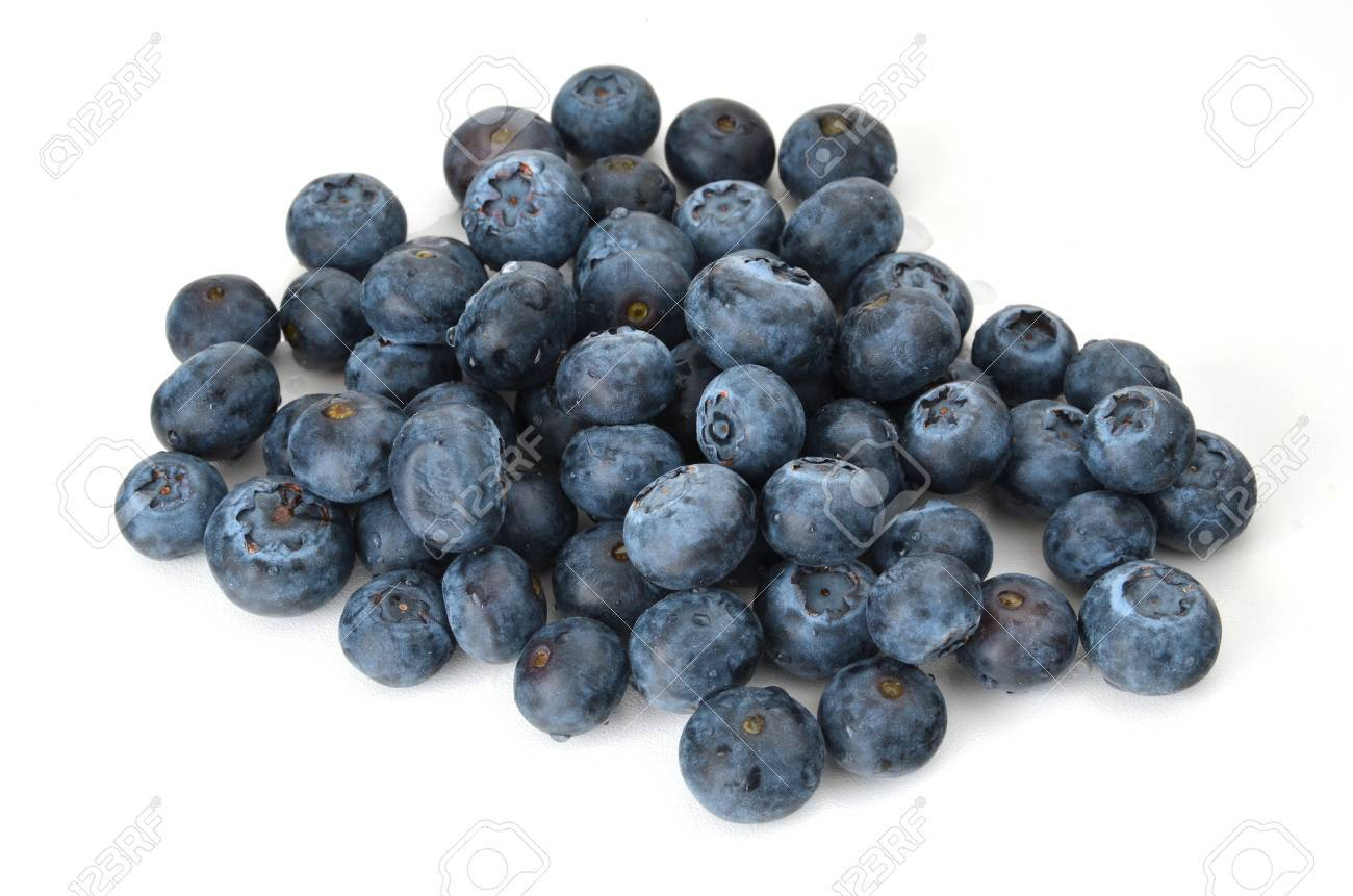A small pile of blueberries on white background Standard-Bild - 17209962