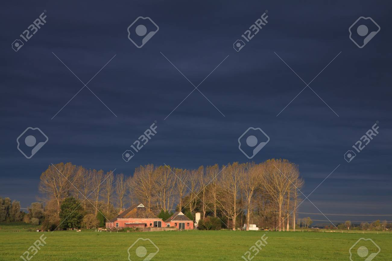 Landscape with grassland and farm on a rainy day Stock Photo - 10482527