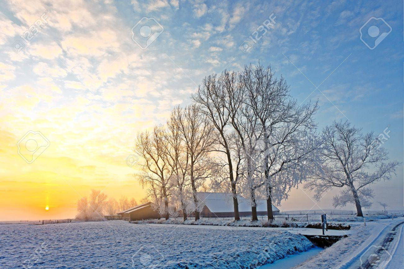 Cold white winter landscape at sunset in Holland Stock Photo - 13333809