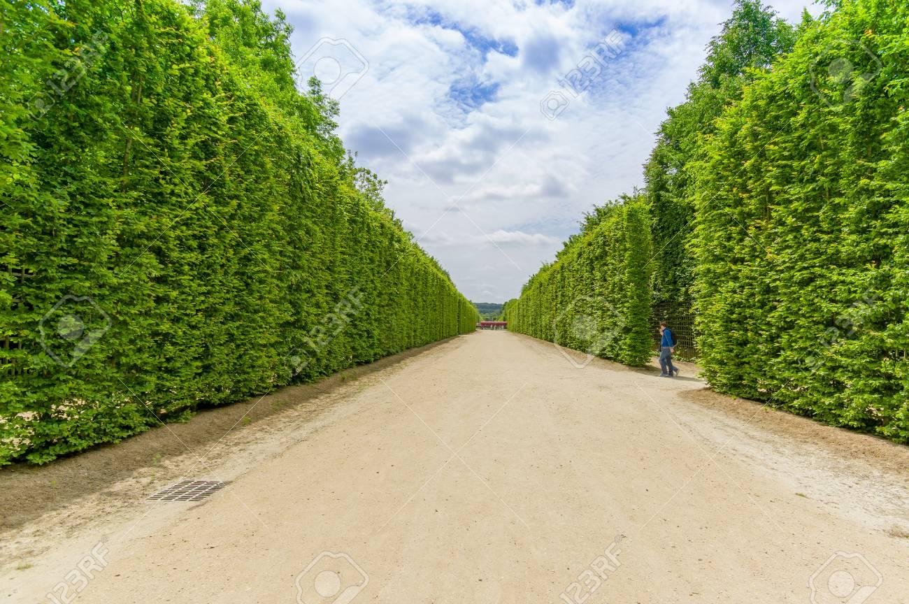 Paris france giu di fama mondiale giardini di versailles