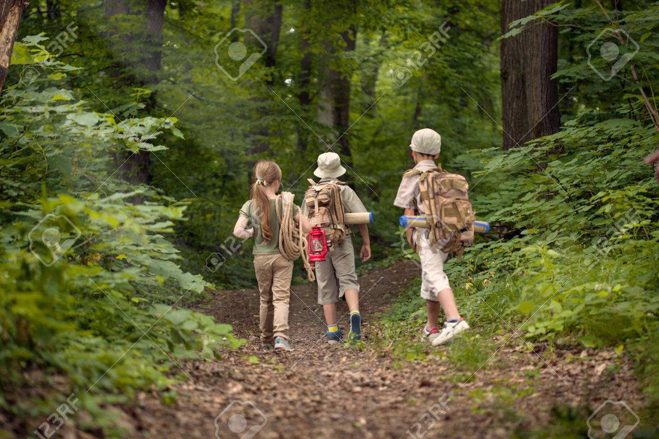 boys and girl go hiking with backpacks on forest road bright sunny day - 71064523