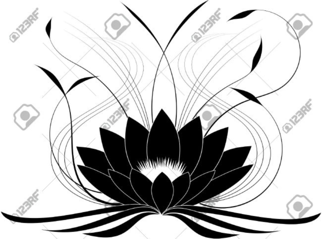Black japanese lotus (vector illustration) Stock Vector - 23240629