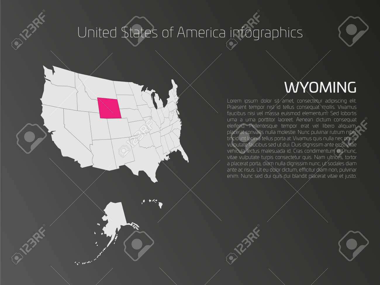 united states of america aka usa or us map infographics template