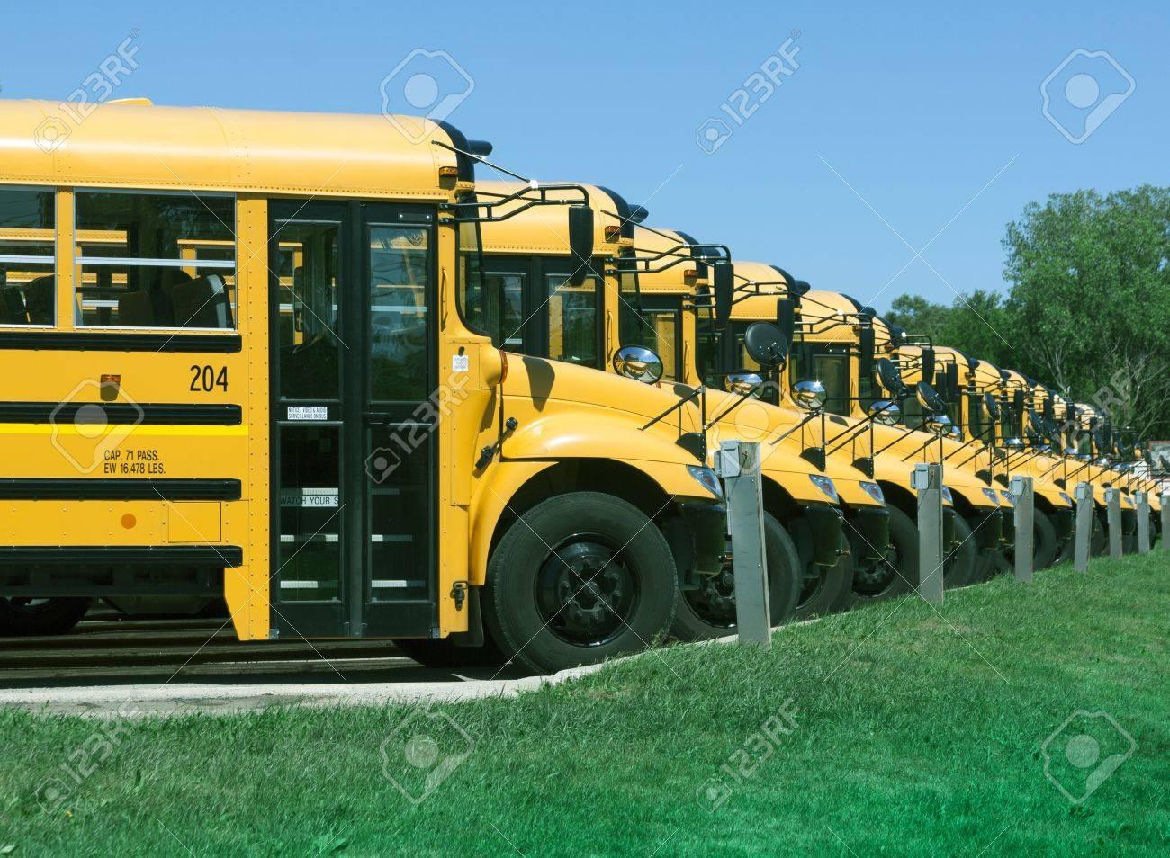 yellow school buses in parking lot foto royalty free gravuras