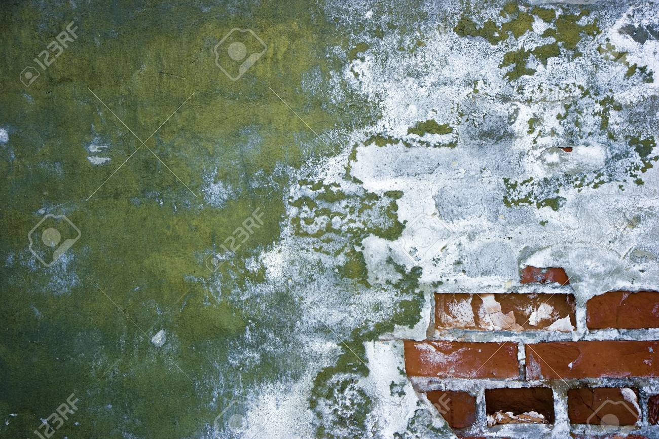 old peeling walls with plaster and brick Stock Photo - 7202283
