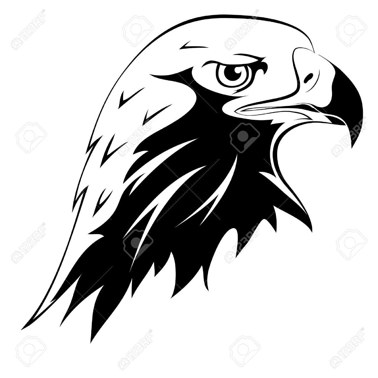 eagle head stock photos u0026 pictures royalty free eagle head images
