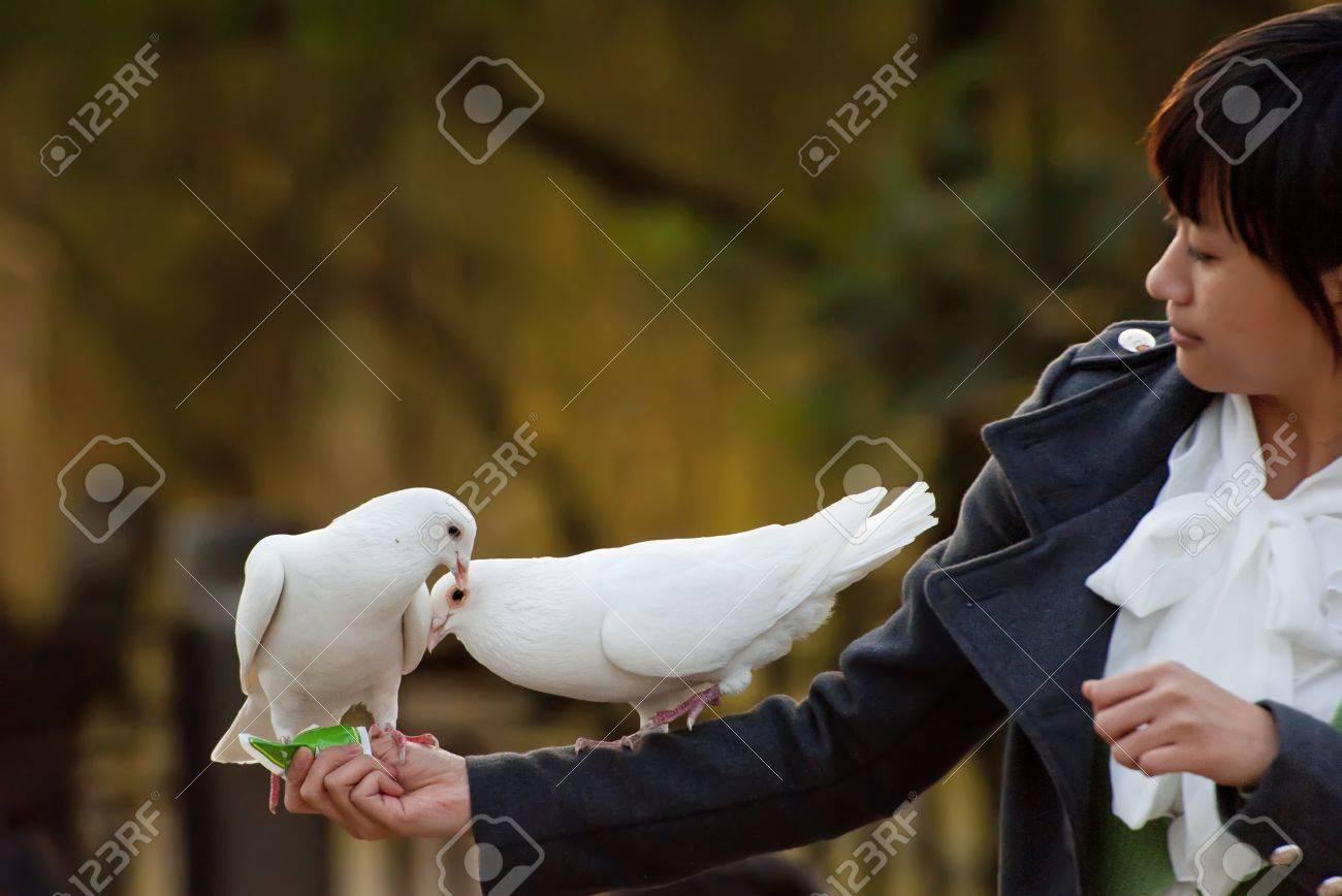 white dove and girl Stock Photo - 8478088